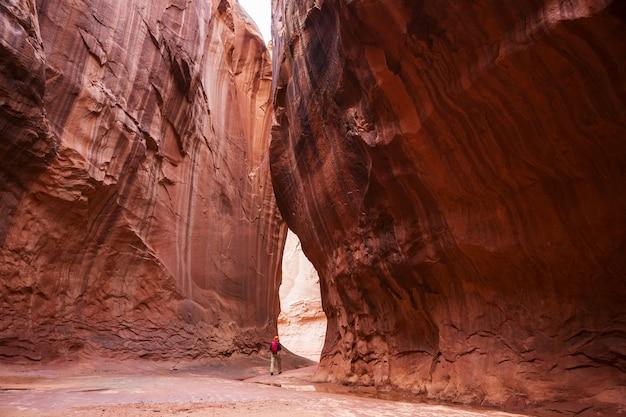 Slot canyon im grand staircase escalante nationalpark, utah, usa. ungewöhnliche bunte sandsteinformationen in den wüsten von utah sind ein beliebtes ziel für wanderer.