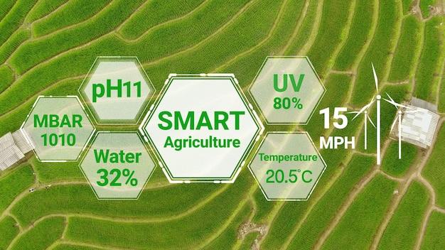 Smarte digitale landwirtschaftstechnologie durch futuristische sensordatenerfassung