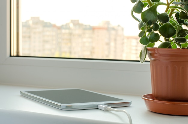 Smartphone und blume in einem vase am fenster