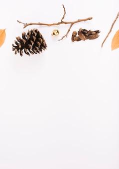 Snag und zweig auf weißem brett