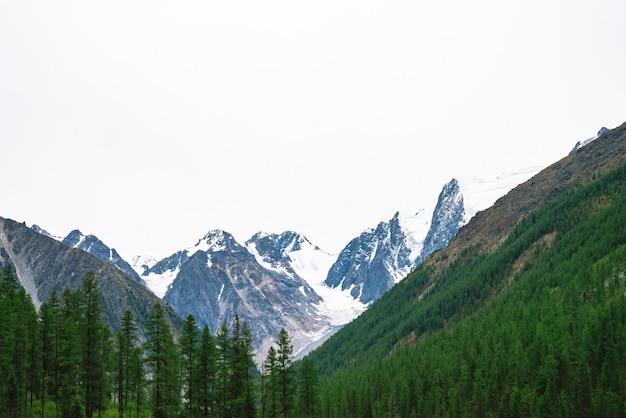 Snowy-gebirgsspitze hinter hügel mit wald unter bewölktem himmel. rocky ridge bei bewölktem wetter. weißer schnee am gletscher. stimmungsvolle landschaft majestätischer natur.