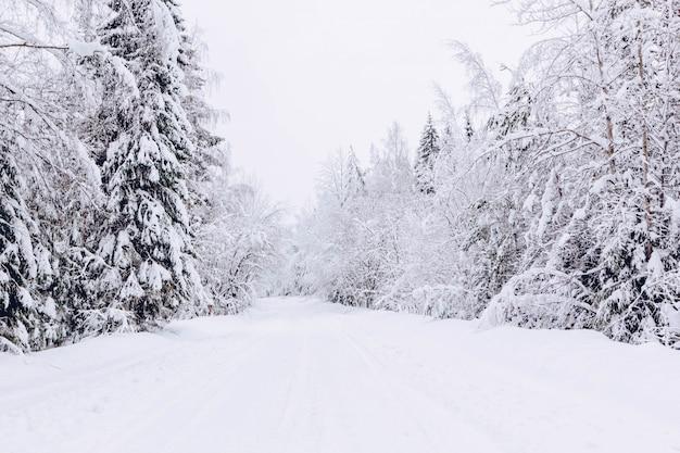 Snowy-straße im winterwald, schöne eisige weiße landschaft, russland