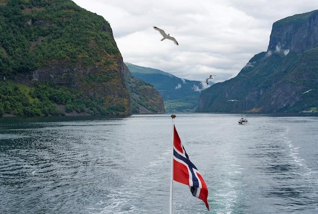 Sognefjord und neroyfjord berg meerblick mit norwegischer flagge
