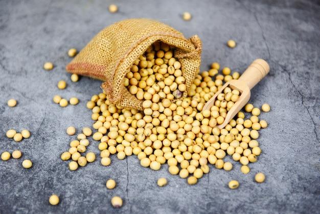 Sojabohnen-agrarprodukte auf dem sack - trockene sojabohnen