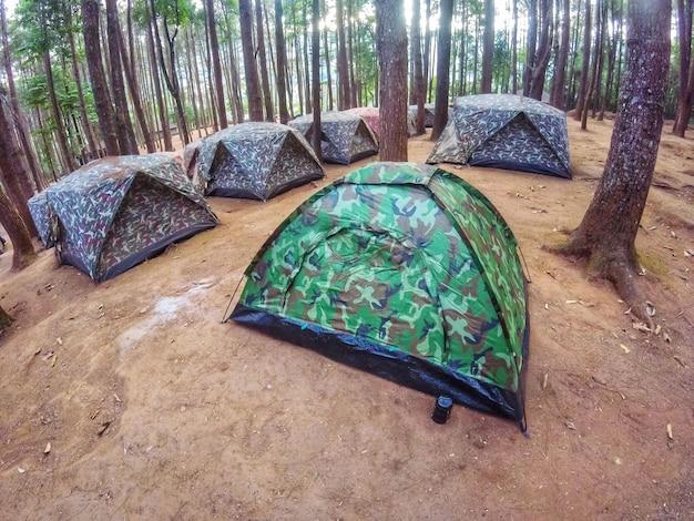 Soldatmuster vieler zelte im campingplatzbereich im kiefernwald.
