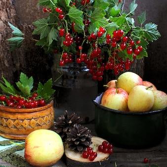 Sommer äpfel minze johannisbeere