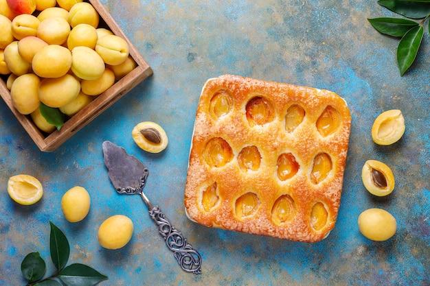 Sommer aprikosenkuchen hausgemachte köstliche fruchtdessert