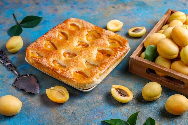 Sommer aprikosenkuchen mit frischen aprikosen