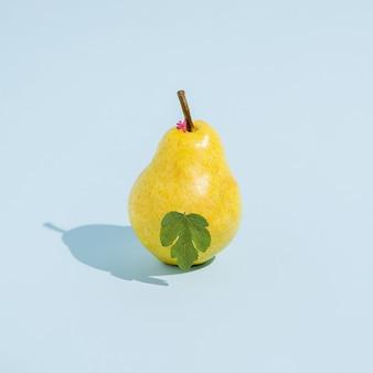 Sommer concept.eva wie birnenfrucht mit feigenblatt auf gelbem hintergrund isoliert. abstrakt. quadratisches layout