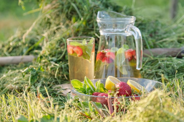 Sommer erfrischende natürliche hausgemachte getränke.