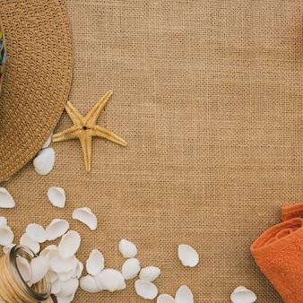 Sommer-komposition mit dekorativen seestern