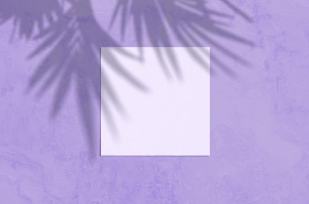 Sommer moderne sonnenlicht schreibwaren szene. leere grußkarte der flachen draufsicht mit palmblatt und zweigschattenüberlagerung auf schmutzvioletthintergrund.