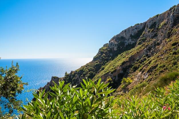 Sommer panorama seelandschaft