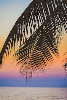 Sommer retro palme schöner ozean