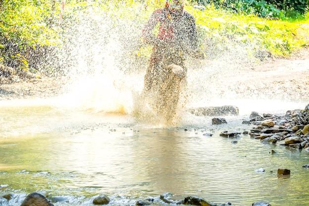 Sommer sonniger tag. viel spritzwasser verbirgt enduro-sportler, wenn er einen waldbach überwindet