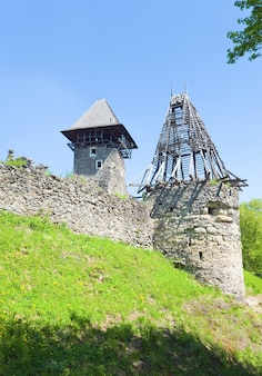 Sommeransicht der ruinen der burg nevytsky (dorf kamyanitsa, 12 km nördlich von uzhhorod, oblast transkarpatien, ukraine). erbaut im 13. jahrhundert.