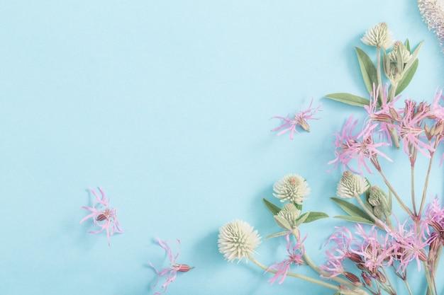 Sommerblumen auf blauer papieroberfläche