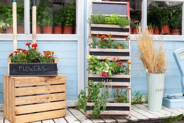 Sommerdekor verandahaus aromatische gewürze wachsen im haus blumen im topf auf der veranda