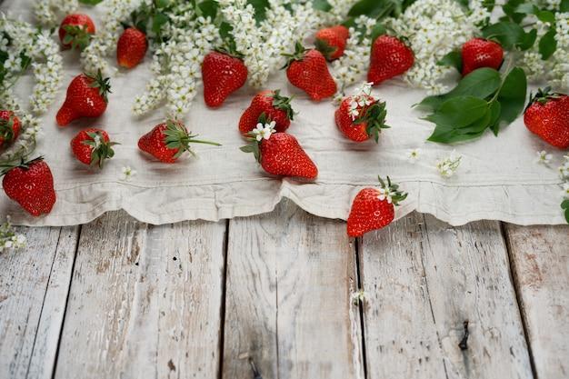 Sommererdbeerfrüchte und vogelkirschblüte