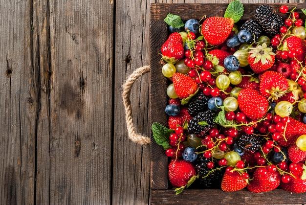 Sommerfrüchte und beeren. 6 arten draufsicht der rohen biobauernbeeren
