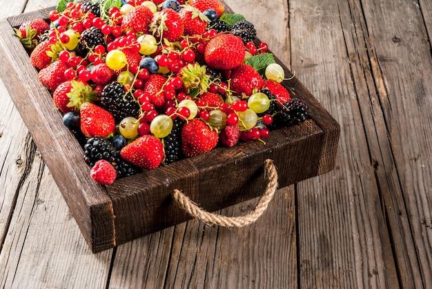 Sommerfrüchte und beeren. 6 arten rohe organische landwirtbeeren