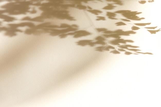 Sommerhintergrund des schattenbaums auf einer weißen wand. weiß und schwarz zum überlagern eines fotos oder modells