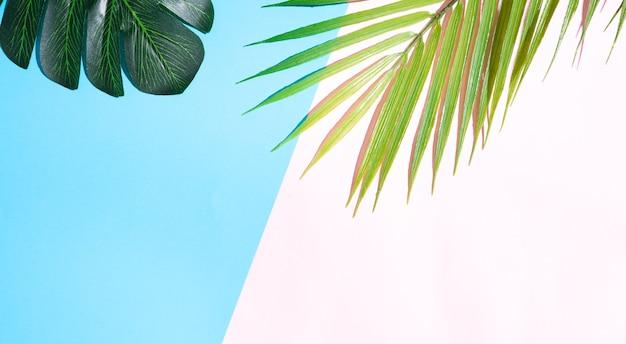 Sommerhintergrund mit blatt auf gelbem und rosa hintergrund