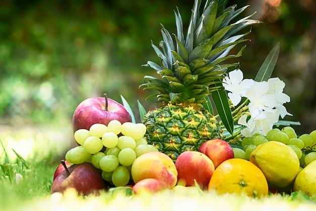 Sommerhintergrund mit reifen früchten