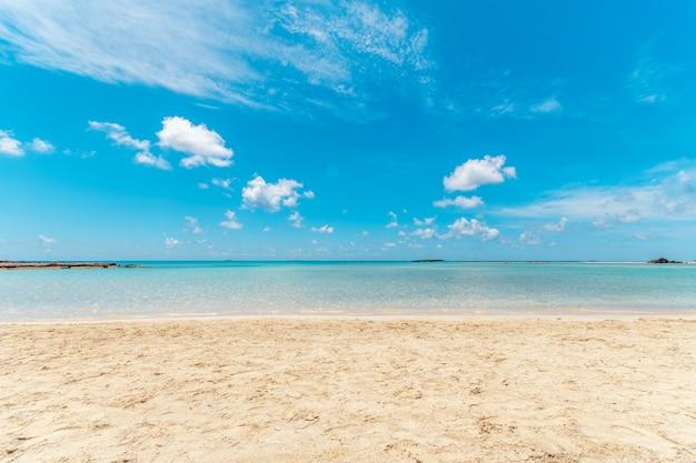 Sommerhintergrund mit tropischem strand