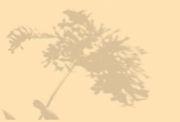 Sommerhintergrund von pflanzenschatten. schatten einer exotischen pflanze an einer beige wand. attrappe, lehrmodell, simulation.