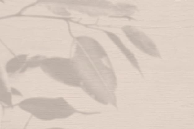 Sommerhintergrund von pflanzenschatten. schatten einer exotischen pflanze an einer pfirsichwand. attrappe, lehrmodell, simulation.