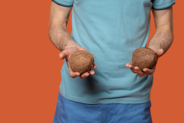 Sommerlicher geschmack. zwei frische leckere kleine kokosnüsse, die auf den palmen des mannes auf orangem hintergrund liegen, kein gesicht