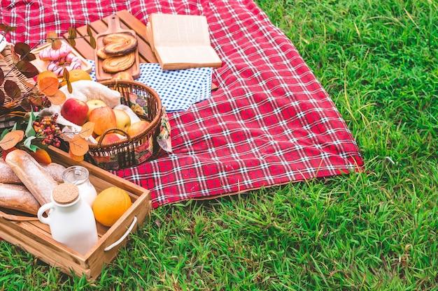 Sommerpicknick mit einem korb des lebensmittels auf decke im park. freier platz für text