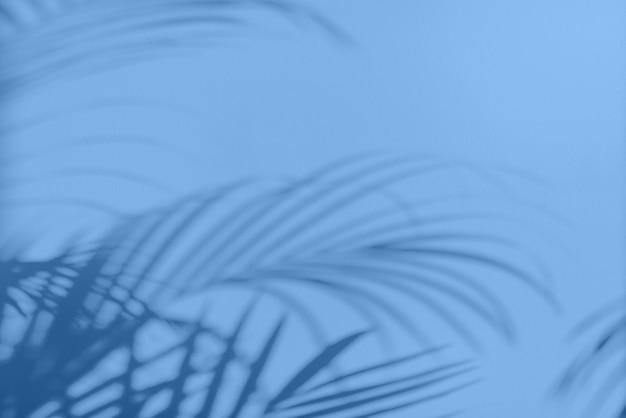 Sommerreisekonzept. der schatten der exotischen palmblätter liegt auf dem monochromen farbhintergrund. trendy blau und ruhige farbe.