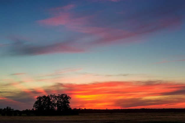 Sommersonnenuntergang mit rosa orange wolken über dem feld