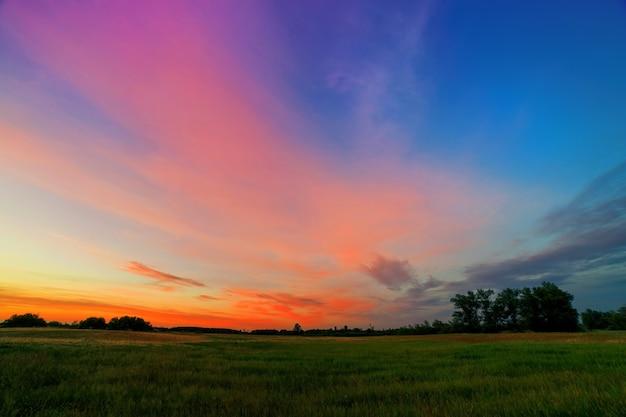 Sommersonnenuntergang mit rosa orange wolken über einem grünen feld