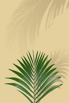 Sommerstrandkonzept mit tropischen palmblättern und schatten auf sandfarbenhintergrund