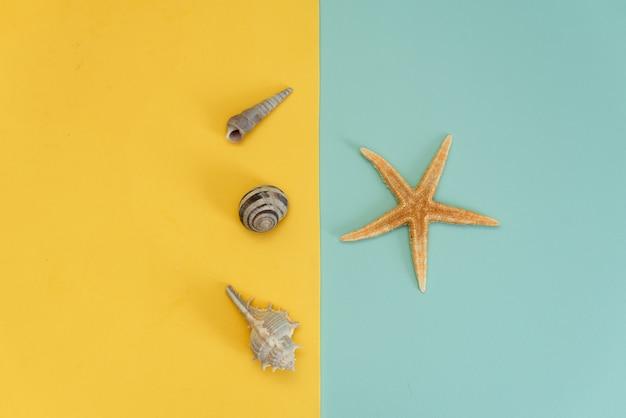Sommerstrohhut der frauen, tropische palmblätter, oberteile, starfish auf gelb