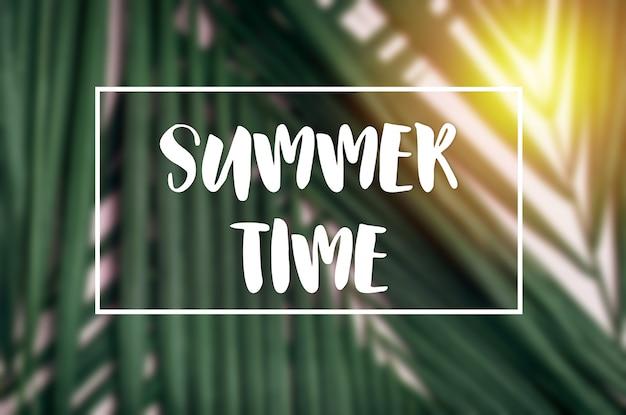 Sommerzeitrahmenwort mit palmblatt und sonnenlicht.