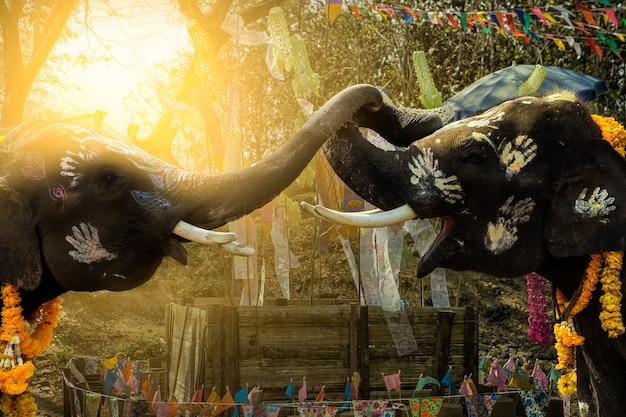 Songkran festival elefanten von unbezahlbarem thailand