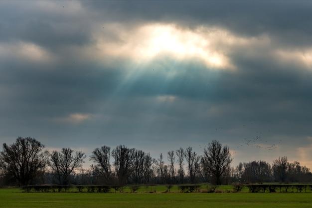 Sonne scheint hinter den dunklen wolken über dem grünen feld