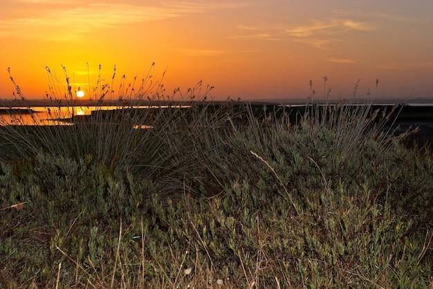 Sonnenaufgänge in san fernando, cadiz, spanien
