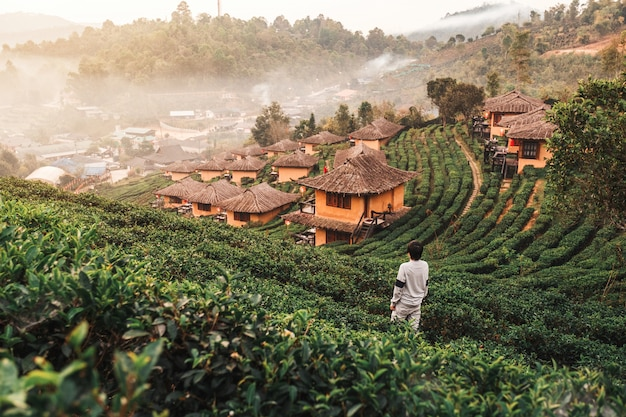 Sonnenaufgang an lee-wein rak thai, chinesische regelung, mae hong son, thailand