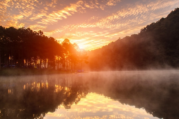 Sonnenaufgang bei pang-ung, kiefernwaldpark, mae hong son, nördlich von thailand