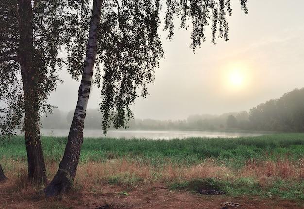 Sonnenaufgang im nebel über dem see