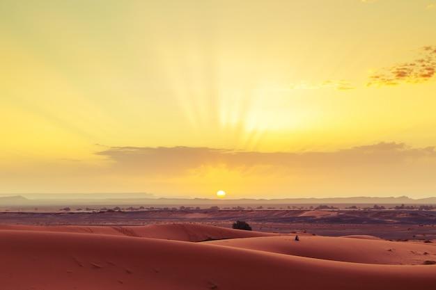 Sonnenaufgang in der sahara-wüste, marokko.