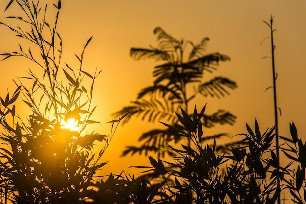 Sonnenaufgang und seine farben