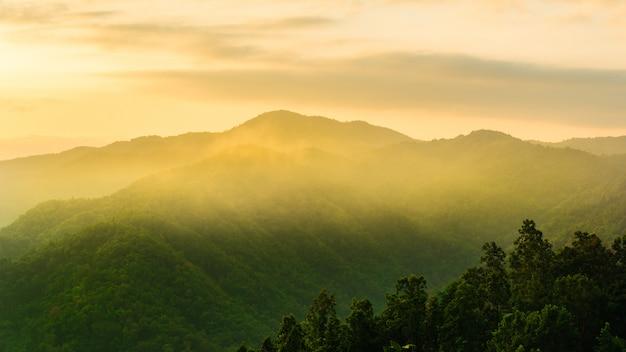 Sonnenaufganglandschaftsnebeliger zeitmorgen. landschaft der schönen nebligen landschaft am morgen.