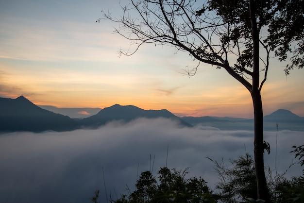 Sonnenaufgangnebel bedeckt berghintergrund im landschaftswinter nebligen landschaftswald