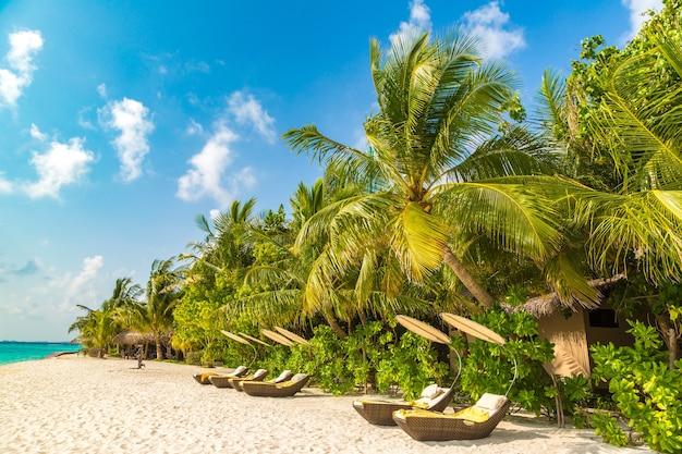 Sonnenbank am tropischen strand auf den malediven